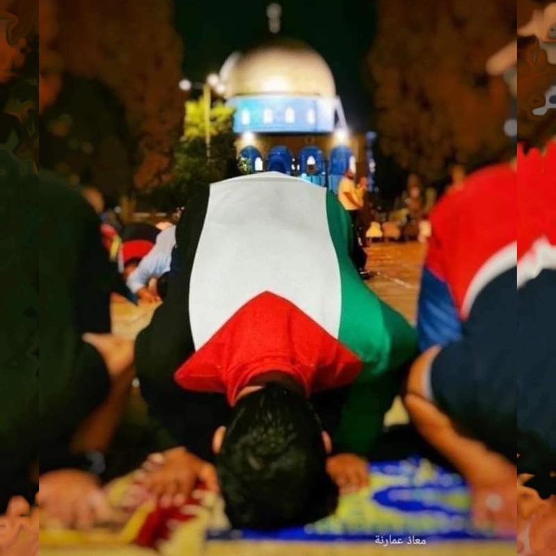 أبطال المسجد الأقصى يكتبون تاريخ فلسطين بالدماء