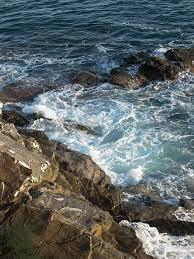 بسبب الامواج العاتية.. ارتطم بالصخور وهو يمارس هواية السباحة
