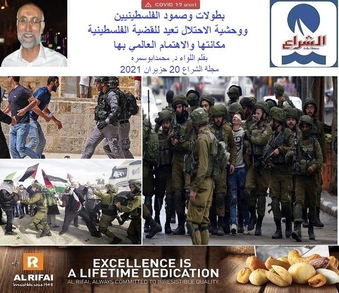 بطولات وصمود الفلسطينيين ووحشية الاحتلال تعيد للقضية الفلسطينية مكانتها والاهتمام العالمي بها