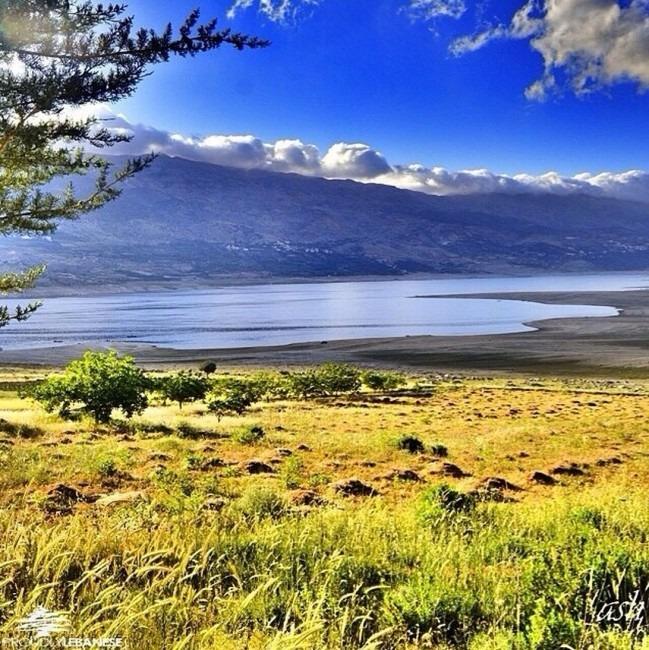 بحيرة القرعون... الصور تتكلم عن جمال فائق