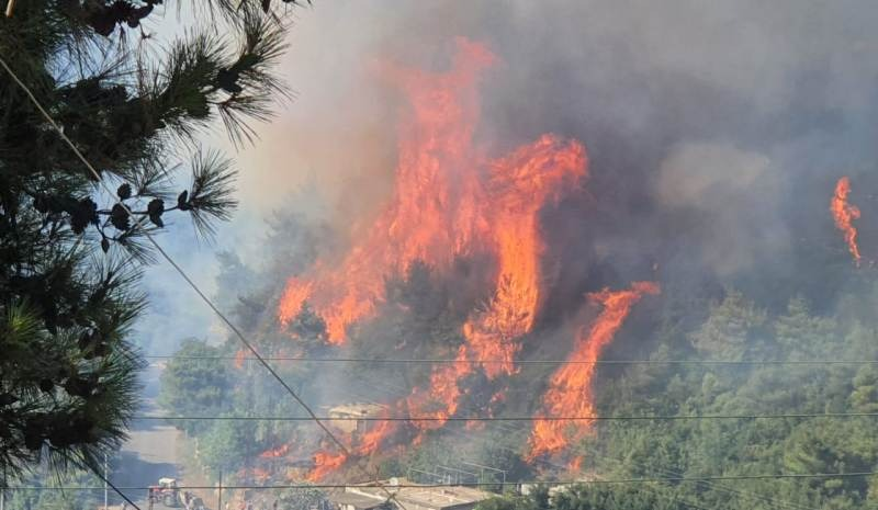 محمد سليمان: أكروم مازالت تحترق والمطلوب التحرك لوقف هذه الكارثة