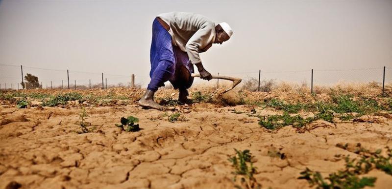 هل يقف العالم العربي على حافة أزمة غذاء طاحنة؟!