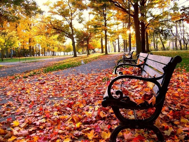 كيف تحتفل الشعوب بالاعتدال الخريفي؟